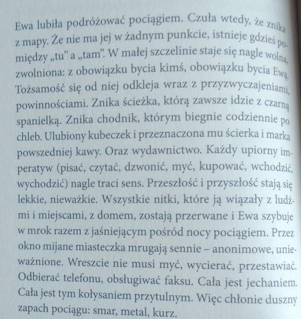 Agnieszka Wolny-Hamkało, Zaćmienie, wyd. Czarne