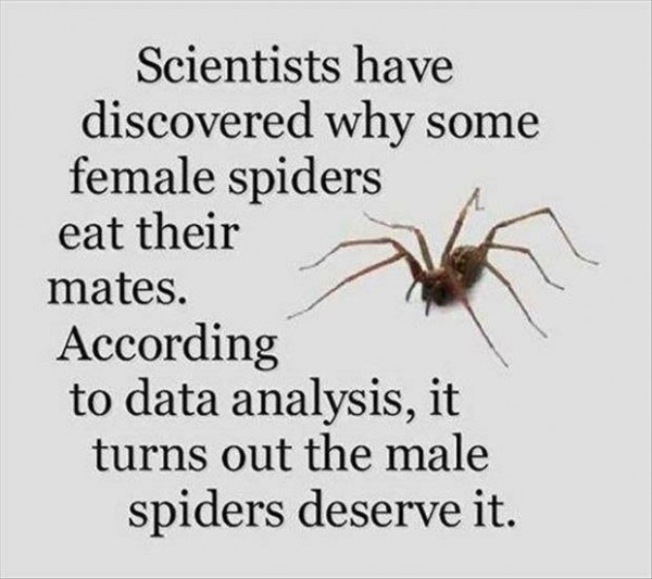 Saw this and could not resist posting it, even if spiders freak me out.