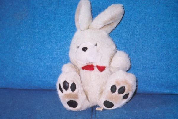 Squiffy Bunny