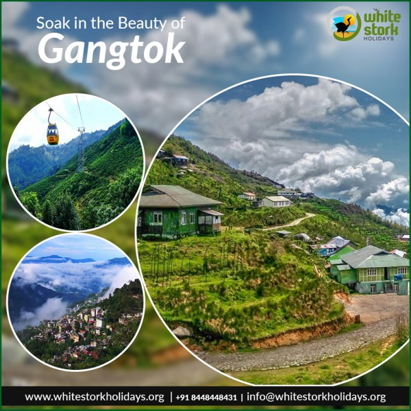 Explore Hill stations with Gangtok Tour Packages