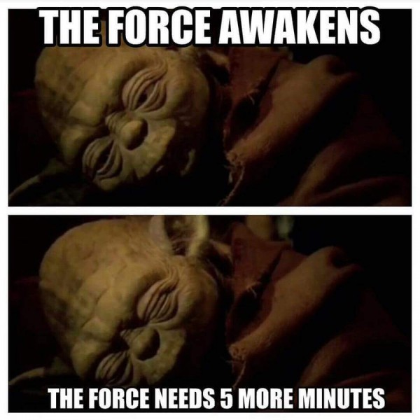 Yoda and I are on the same page this morning