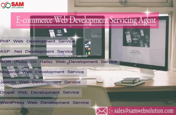 Web Development Services for all E-commerce Business | E-commerce Web Development