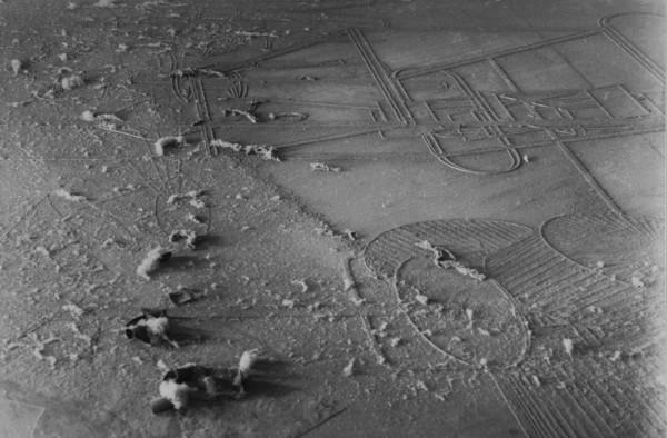 Man Ray / Marcel Duchamp - L'élevage de la poussière, 1920