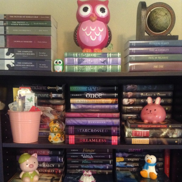 I thought I'd take this picture before I re-organize my Bookcases