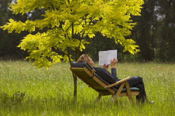 How serene and at peace does this reading spot look?