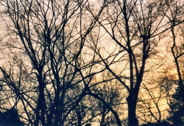 Sunset, Ridgewood, New Jersey
