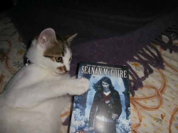 Buddy read with Sebastião