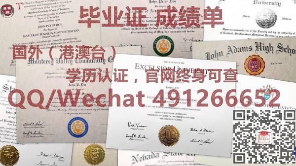 在德国波鸿大学读研时考试挂科怎么办理国外学历认证?wechat491266652