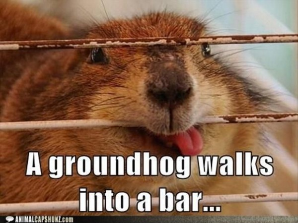 Happy Ground Hog Day!