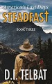 STEADFAST Book Three: America's Last Days (The Steadfast Series 3) - D.I. Telbat