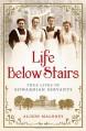 Life Below Stairs: True Lives of Edwardian Servants - Alison Maloney