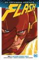 The Flash, Vol. 1: Lightning Strikes Twice - Ivan Plascencia, Joshua Williamson, Steve Wands, Carmine Di Giandomenico, Karl Kerschl