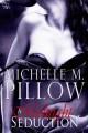A Midnight Seduction - Michelle M. Pillow