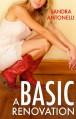 A Basic Renovation - Sandra Antonelli