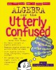 Algebra for the Utterly Confused (Utterly Confused Series) - Larry J. Stephens