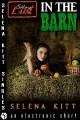 In the Barn (Sibling Lust #2) - Selena Kitt