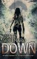 Down - Nate Southard