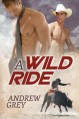 A Wild Ride - Andrew Grey