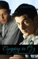 Escaping in Oz: (MM College Romance) (Accepting Love Book 1) - Aria Grace