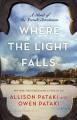 Where the Light Falls: A Novel of the French Revolution - Allison Pataki, Owen Pataki