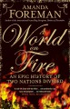 A World on Fire: An Epic History of Two Nations Divided - Amanda Foreman