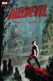 Daredevil (2015-) #26 - Charles Soule, Ron Garney