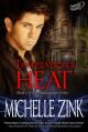 Temptation's Heat (The Shadowguard, #1) - Michelle Zink