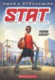 Home Court - Amar'e Stoudemire, Tim Jessell