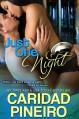 Just One Night: New Adult Erotic Romance (Take a Chance) - Caridad Pineiro