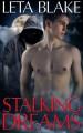 Stalking Dreams - Leta Blake