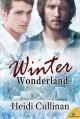 Winter Wonderland - Heidi Cullinan