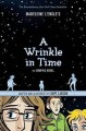 A Wrinkle in Time: The Graphic Novel - Madeleine L'Engle, Hope Larson