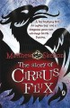 The Story of Cirrus Flux - Matthew Skelton
