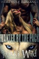 Wanted By The Pack (Werewolf Shifter FMMM Menage Steamy Romance) - Nikki Wild