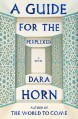 A Guide for the Perplexed - Dara Horn