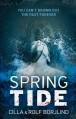 Spring Tide - Cilla Börjlind