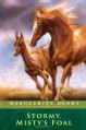 Stormy, Misty's Foal - Marguerite Henry