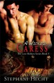 A Wicked Caress - Stephani Hecht