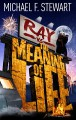 Ray Vs the Meaning of Life - Michael F. Stewart