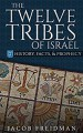 The Twelve Tribes of Israel: History, Facts & Prophecy - Jacob Friedman