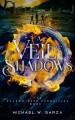 A Veil of Shadows: The Shadow Gate Chronicles Book II (Volume 2) - Michael W. Garza