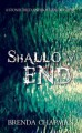 Shallow End: A Stonechild and Rouleau Mystery - Brenda Chapman