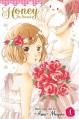 Honey So Sweet, Vol. 1 - Amu Meguro