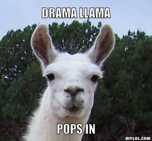 Oh noes! It's the drama llama!!