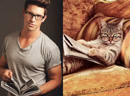 Books are better with cats and cute men ;-)