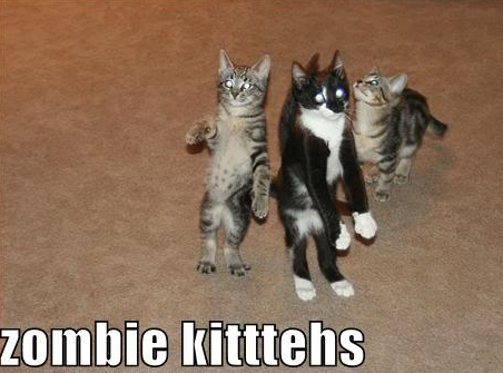 Happy Caturday Zombie Style