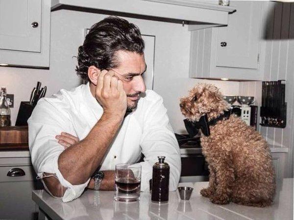 Dog Lovin' Gandy #7