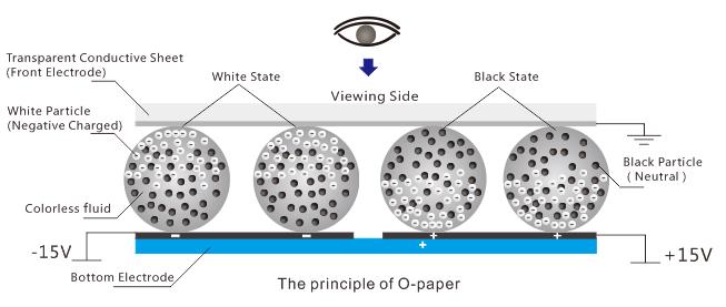 Zasada działania papieru elektronicznego O-paper