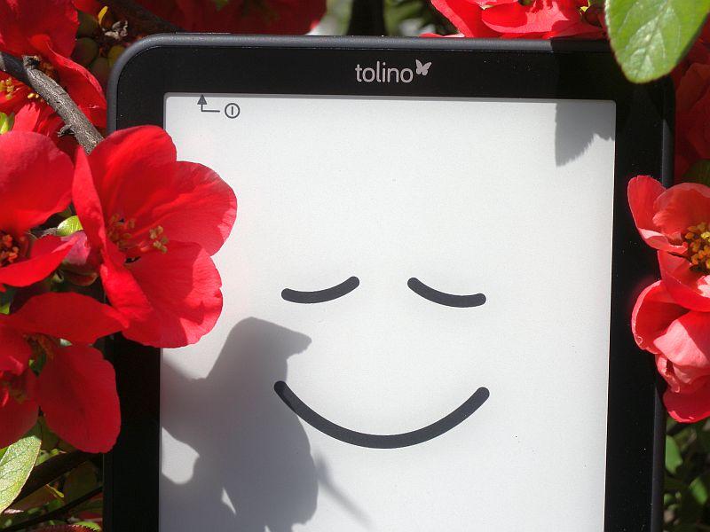 Ekran E-Ink Carta w Tolino Vision 2