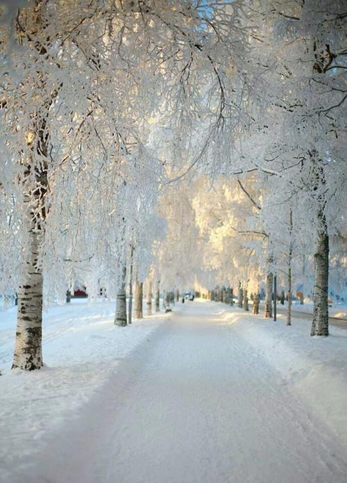 Snow. Medieval Road. Sinful Folk.